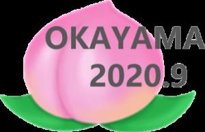 第29回視覚障害リハビリテーション研究発表大会in岡山ロゴ
